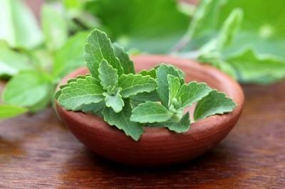 propiedades y beneficios de la stevia