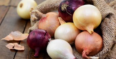 propiedades y beneficios de la cebolla