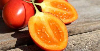 propiedades del tomate de arbol