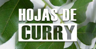 beneficios de las hojas de curry