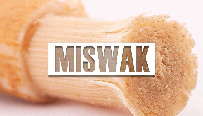 beneficios del miswak