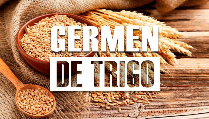 para que sirve el germen de trigo