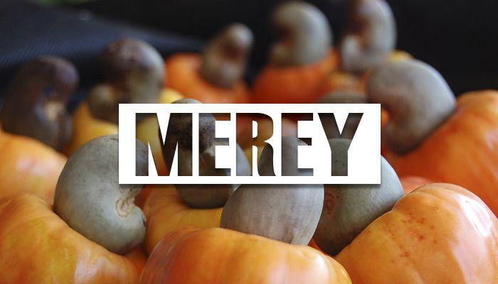 propiedades del merey